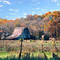 Barn In Liberty Mo by Steve Karol