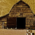 Barn In Sepia by Diana Hatcher