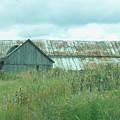 Barn In Softness Of Nature by Deborah Benoit