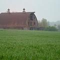 Barn In Summer by Mark Fuller