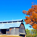 Barn In The Fall  by Brittany Horton