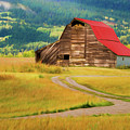 Barn In Victor Idaho by TL Mair