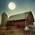 Barn by Jill Battaglia