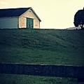 Barn by Kathy Barney