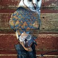 Barn Owl by Alicia Doerksen