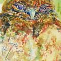 Barn Owl Thinking by Elizabeth Way
