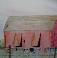Barn The Red by D Angelico