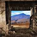 Barn With A View by Kathy Jennings