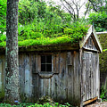 Barn With Green Roof by Lilia D