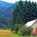 Barn With Red Door by Nancy Harrison