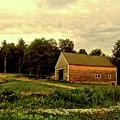 Barn With Wildflowers by Elizabeth Tillar
