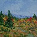 Barnardsville Branch by Gail Kent