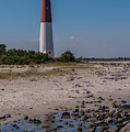 Barnegat Lighthouse Nj by Terry DeLuco