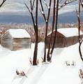 Barns Of West Sand Lake by Sheryl Galinski