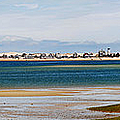Barnstable Harbor Panorama by Charles Harden