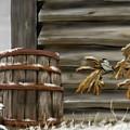 Barnyard Barrel And Chickadee by Darren Cannell