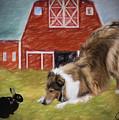 Barnyard Bow by Chuck Heubach
