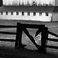 Barnyard Gate by Michael L Kimble