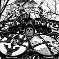 Baroque Wrought Iron Gate With Skull And Coat Of Arms by Menega Sabidussi