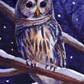 Barred Owl And Starry Sky by Janet Zeh