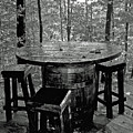 Barrel In The Woods by Dale Chapel