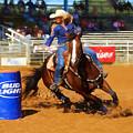 Barrel Rider by Claudia Daniels