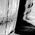 Barrels 3 by Lenore Senior