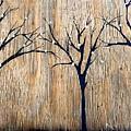 Barren by Alison Stittsworth-hall