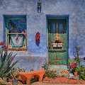 Barrio Viejo With Character by Priscilla Burgers