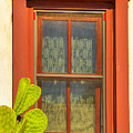 Barrio Window by Larry White