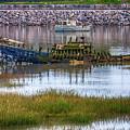 Barry Island Wrecks 3 by Steve Purnell