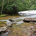 Bartlett Experimental Forest - Bartlett New Hampshire Usa by Erin Paul Donovan