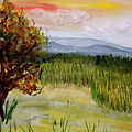 Barton Sunset by Donna Walsh
