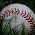 Baseball by Diane Reed