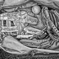 Baseball Gloves Bw by Thomas Woolworth