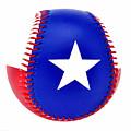 Baseball Star by Erich Grant