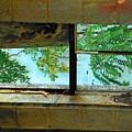 Basement Window by Michael L Kimble