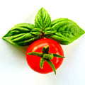Basil And Cherry Tomato by Sarah Black