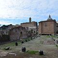 Basilica Aemilia From Behind by Tammy Mutka