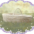 Basket by Adele Aron Greenspun