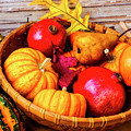 Basket Full Of Autumn by Garry Gay