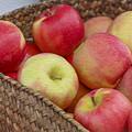 Basket Of Apples by Spencer Studios