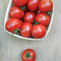 Basket Of Fresh Red Tomatoes by Edward Fielding