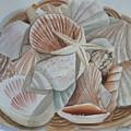 Basket Of Shells by Jo  Edwards
