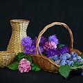 Basket With Astern by Dagmar Luhringova