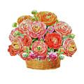 Basket With Ranunculus Flowers Watercolor by Irina Sztukowski