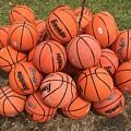 Basketbal Anyone by Cordelia Ford