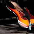 Bass by Lauri Novak