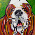 Basset Hound by Ilene Richard