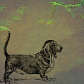 Basset Hound  by Movie Poster Prints